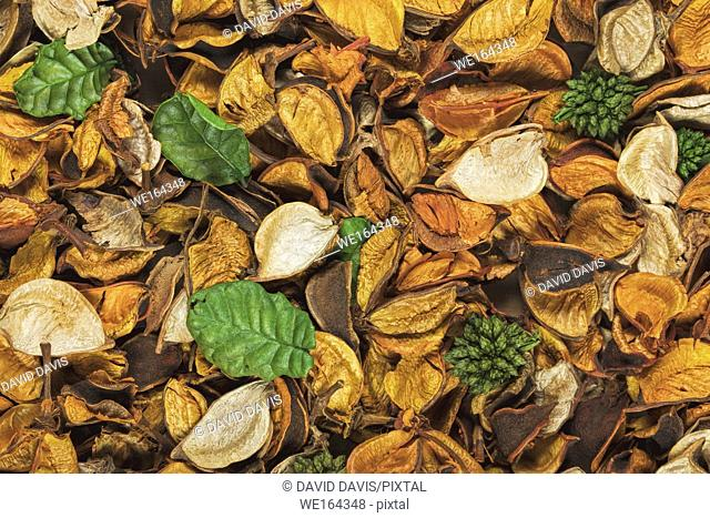 Beautiful and colorful background of Citrus Scent potpourri