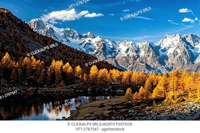 Autumn at Arpy lake, with Mont Blanc chain and Grand Jorasses. Province of Aosta, Aosta valley, Italy