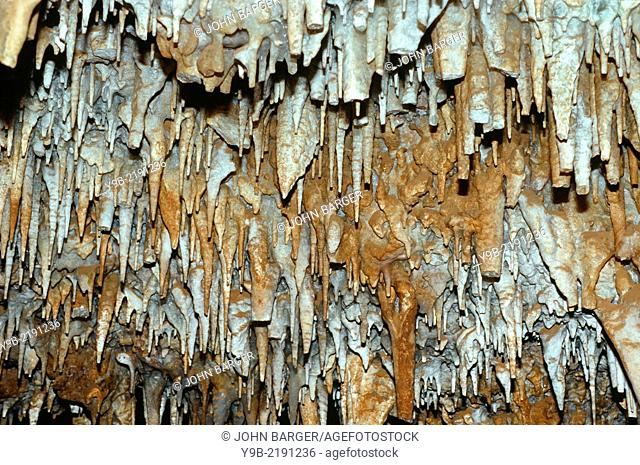 Stalactites hang from natural cave ceiling, Black Hills area, South Dakota, USA