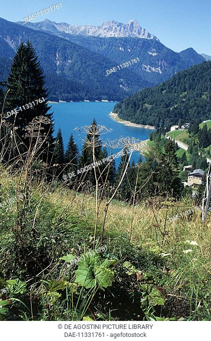 View of the lake Sauris or Maina, Friuli-Venezia Giulia, Italy