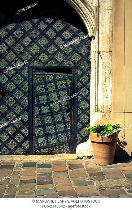 Old, black medieval door and a flowerpot