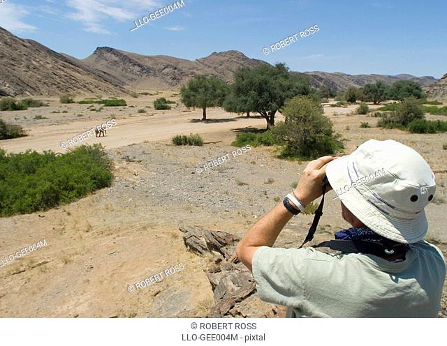 Tourists Viewing a Lone Elephant Loxodonta africana Through Binoculars  Hoanib River, Kaokoland, Namibia, Africa