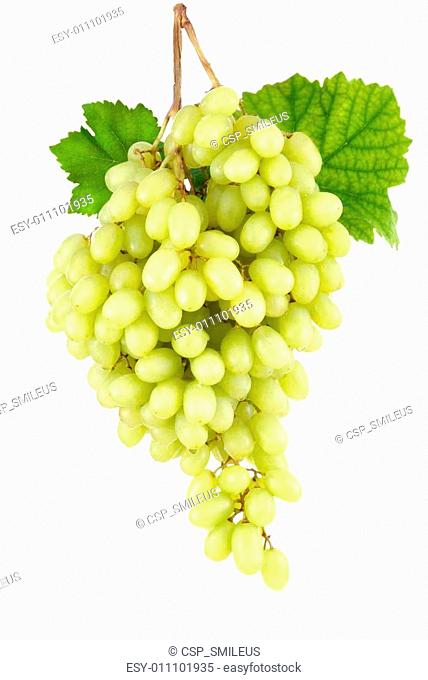 Sweet seedless green grapes on white