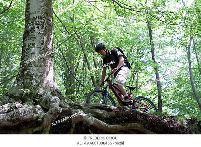 Young man riding bicycle in woods, low angle view