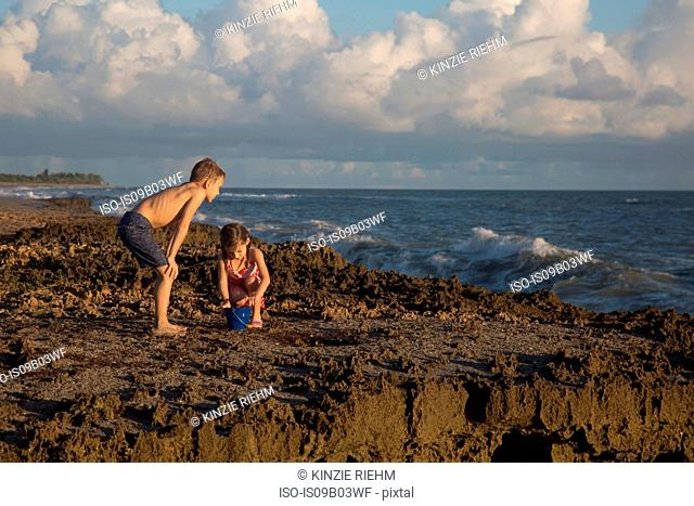 Boy and sister playing with toy bucket on beach, Blowing Rocks Preserve, Jupiter Island, Florida, USA