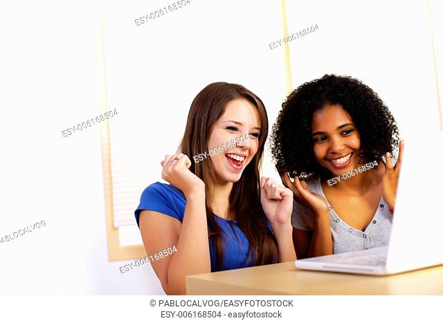 Portrait of two cute girls using a laptop computer