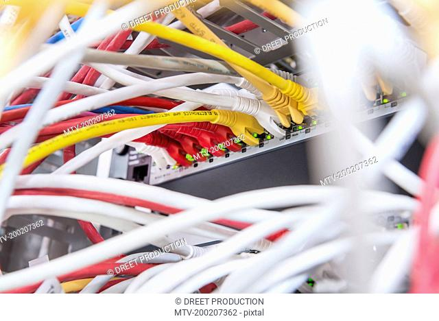 Ethernet lan cables connected to networking router, Munich, Bavaria, Germany
