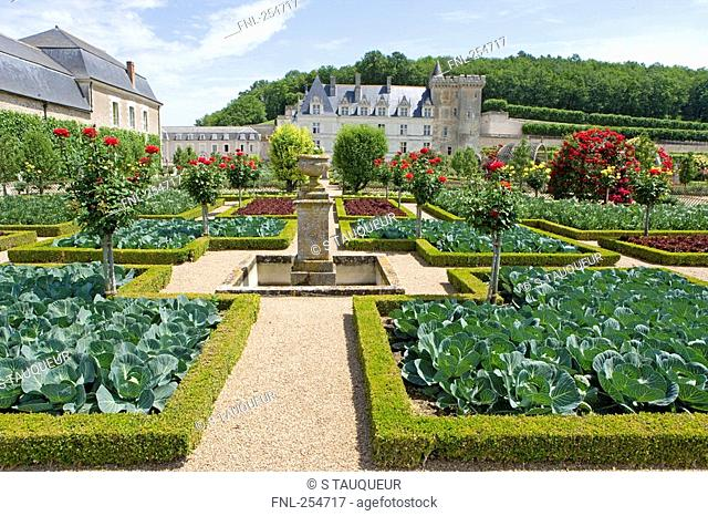 Formal garden in front of castle, Chateau De Villandry, Indre-Et-Loire, France