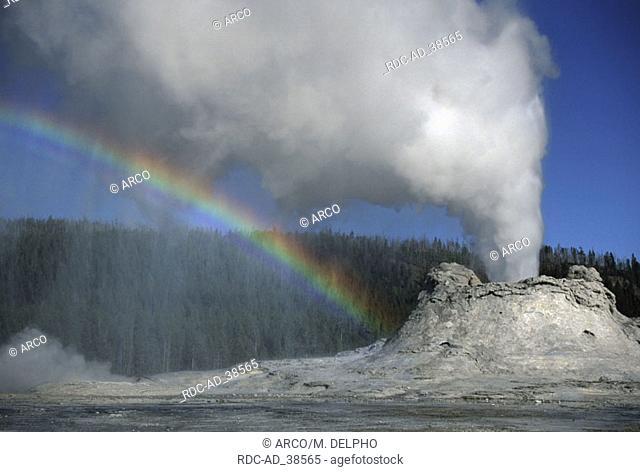 Castle Geyser Upper Geyser Basin Yellowstone national park Wyoming USA