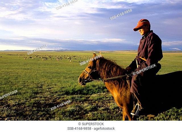 Central Mongolia, Near Karakorum, Grasslands Steppes, Local Man On Horseback Herder