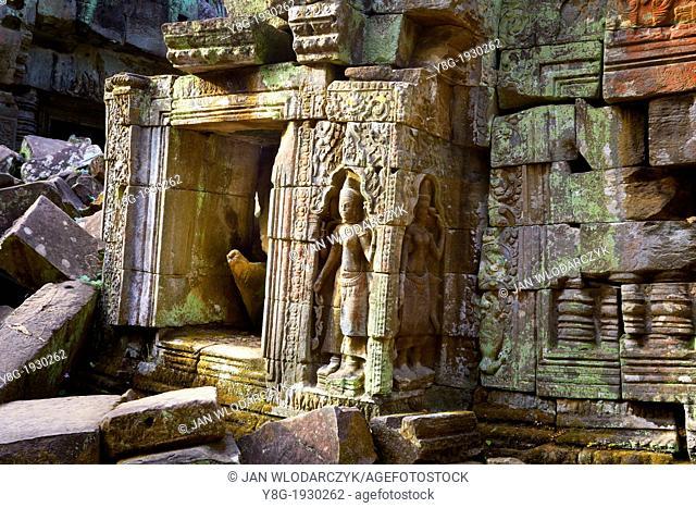 Ruins of the Ta Prohm Temple - Angkor Temple Complex, Siem Reap Province, Cambodia, Asia, UNESCO