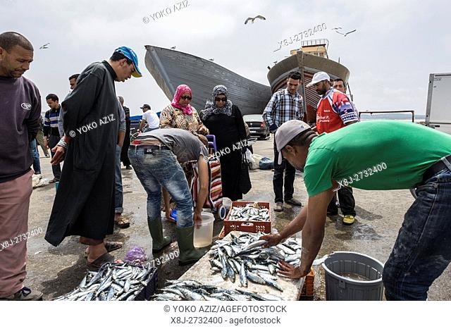 Morocco, Essaouira, fish market