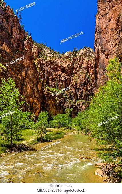 The USA, Utah, Washington county, Springdale, Zion National Park, Zion canyon, Virgin River at The Temple of Sinawava
