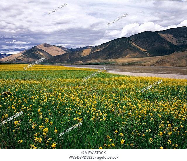 Tsangpo River,Tibet,China