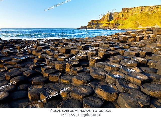 The Giant's Causeway  World Heritage Site  Antrim County, Northern Ireland, Europe