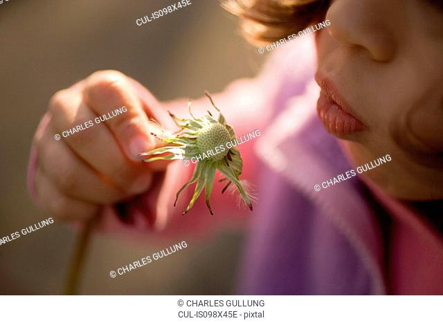 Young girl blowing dandelion clock