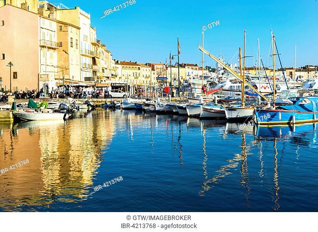 Port of Saint Tropez, Var, Provence-Alpes-Côte d'Azur region, France