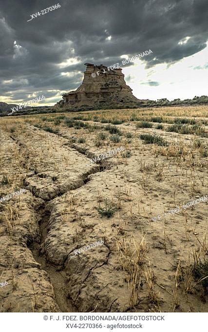 Castejón de Monegros dryland, Jubierre route, Huesca. Aragón, Spain
