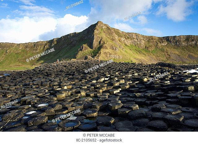 Volcanic Basalt Formations On The Giant's Causeway, County Antrim Northern Ireland
