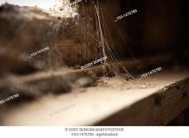 Dusty cobwebs in derelict building