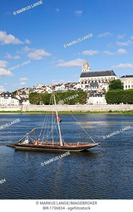 Cityscape of Blois with Blois Cathedral, department of Loire et Cher, France, Europe