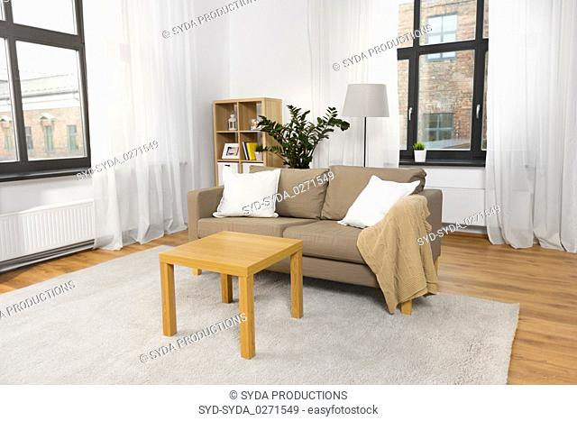 interior of home living room with sofa and table
