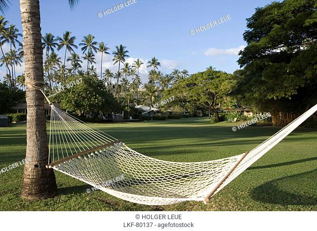 Hammock palm trees and Waimea Plantation Cottages, Waimea, Kauai, Hawaii, USA
