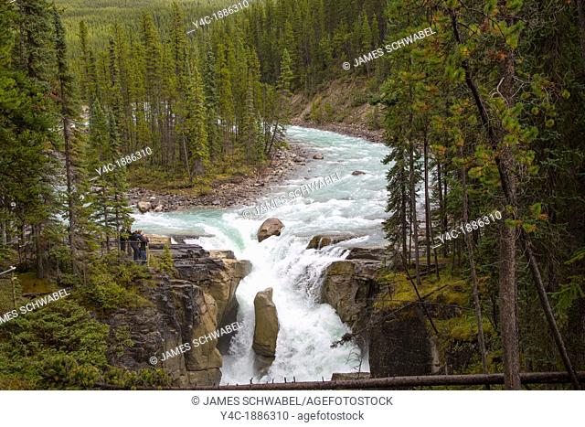Sunwapta Falls along the Icefields Parkway in Jasper National Park in Alberta Canada in the Canadian Rockies
