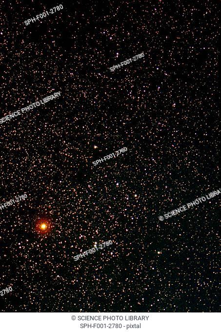 Constellation of Taurus