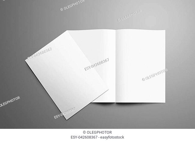 Stylish mockup with two blank A4, (A5) bi-fold brochure with realistic shadows isolated on gray background. One booklet is closed and lie on open on the spread