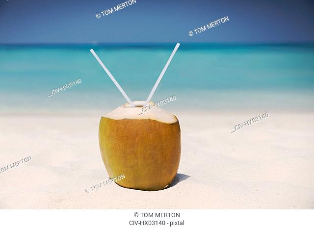 Coconut with two straws on sunny tropical ocean beach