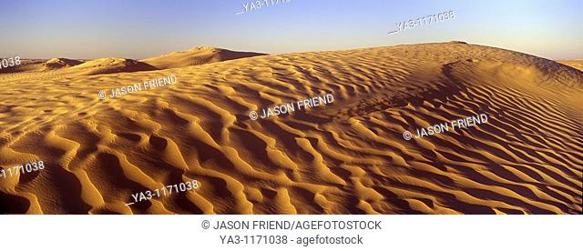 TUNISIA, Zaafrane, Sahara Desert  Morning light illuminates the patterns of the sand dunes of the great erg oriental
