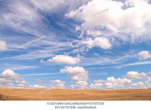 Beautiful blue sky over a brown meado in autumn. Beautiful fall colors