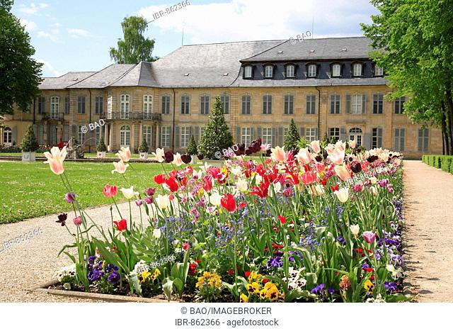 View from the court garden, Neues Schloss, Bayreuth, Upper Franconia, Franconia, Bavaria, Germany, Europe