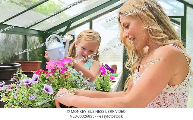 Mother arranges flowers in hanging basket whilst daughter waters them. Shot on Sony FS700 in PAL format at a frame rate of 25fps