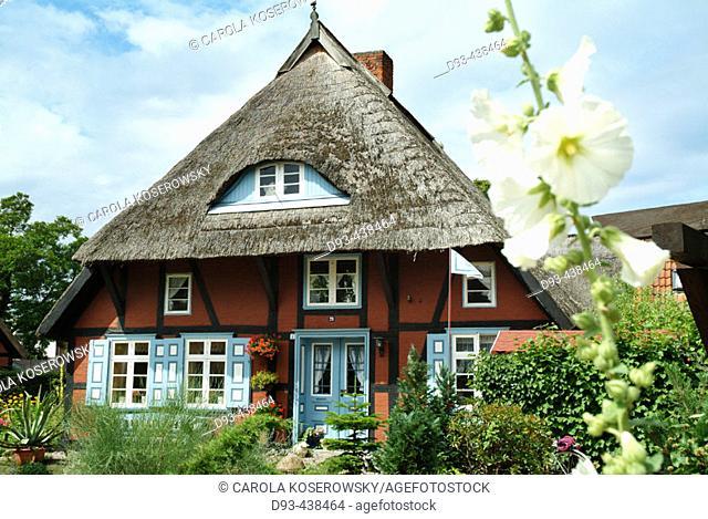 Wustrow, Fischland, Darss, Baltic Sea, Mecklenburg Western Pomerania, Germany
