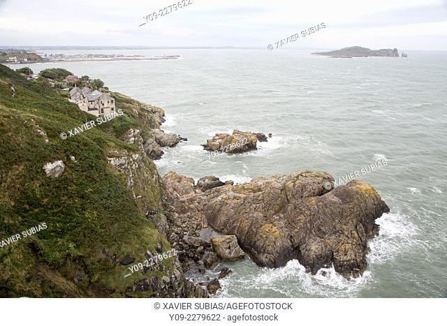 Howth cliff, Dublin, Leinster, Ireland