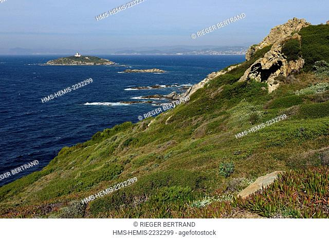 France, Var, Ile des Embiez, Pointe du Coucoussa, in the background of Grand Rouveau Island and the mainland