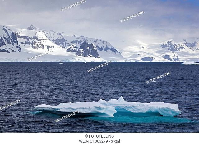 South Atlantic Ocean, Antarctica, Antarctic Peninsula, Gerlache Strait, View of iceberg with penguin and snow-covered mountain range in background