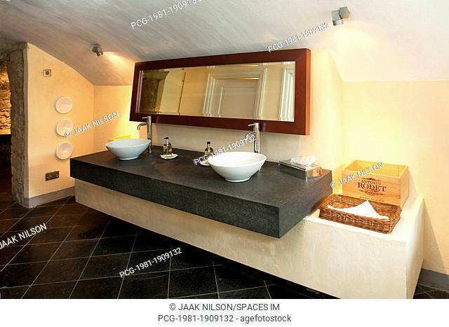 Luxury Public Bathroom