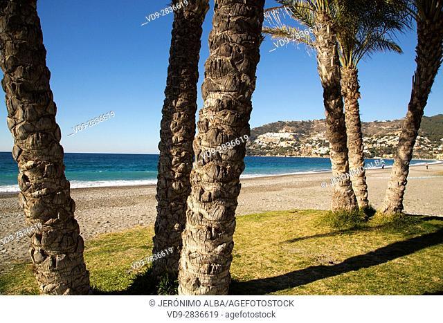 La Herradura beach, Almuñecar. Granada province, Andalusia Southern Spain. Europe