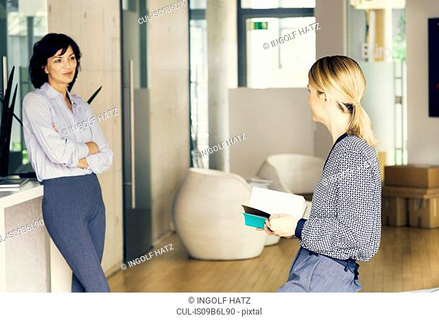 Two businesswomen having discussion in stylish office