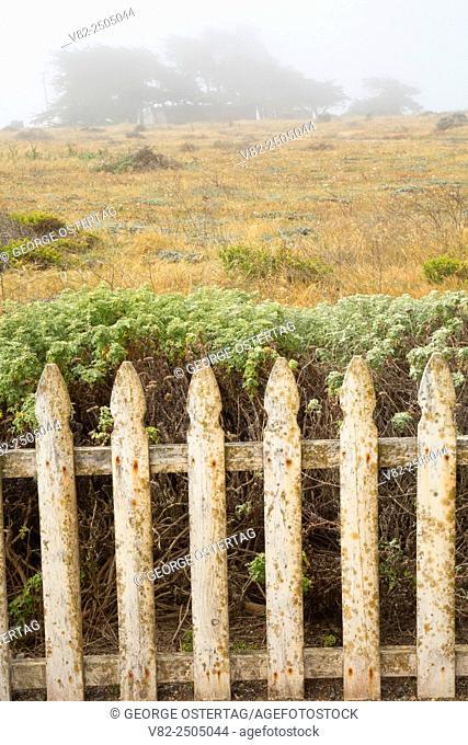Picket fence at Arroyo del Corral Beach, Hearst San Simeon State Park, California