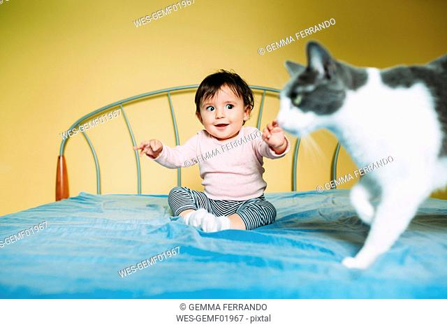 Surprised baby girl with cat on the bed