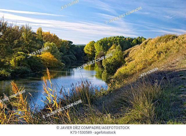 Duero River. Ribera del Duero. Valbuena de Duero. Valladolid Province. Castilla y Leon. Spain