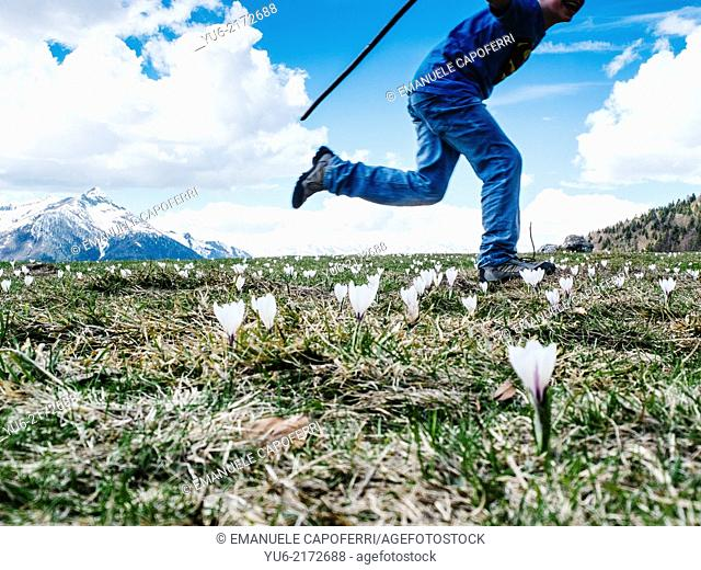 Child runs in blooming meadow in mountain