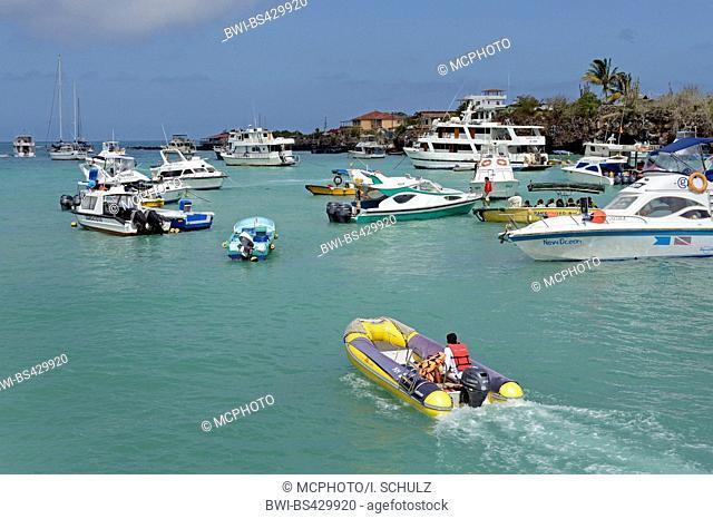 boats and yachts in harbour, Ecuador, Galapagos Islands, Santa Cruz, Puerto Ayora