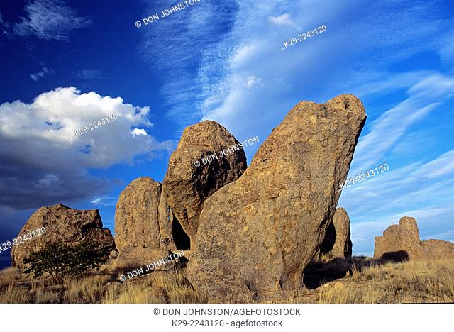 Granite rock outcrops in the desert, City of Rocks State Park, New Mexico, USA