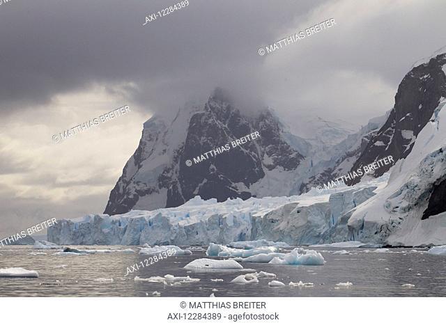 Glacier calving into Neko Harbor, Antarctic Peninsula; Antarctica