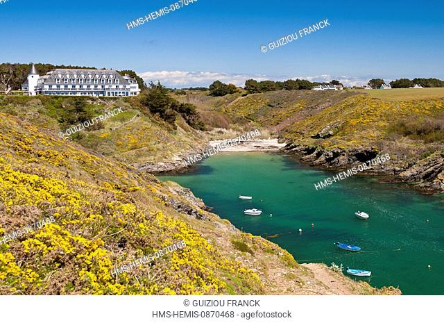 France, Morbihan, Belle Ile en Mer, the wild coast, along the GR340 between the Pointe des Poulains and Herlin beach (Bangor village), Port Goulphar
